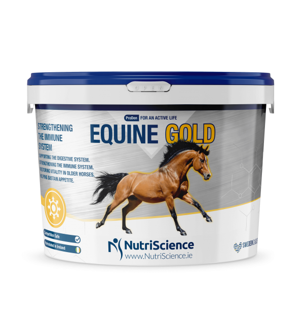 Equine Gold