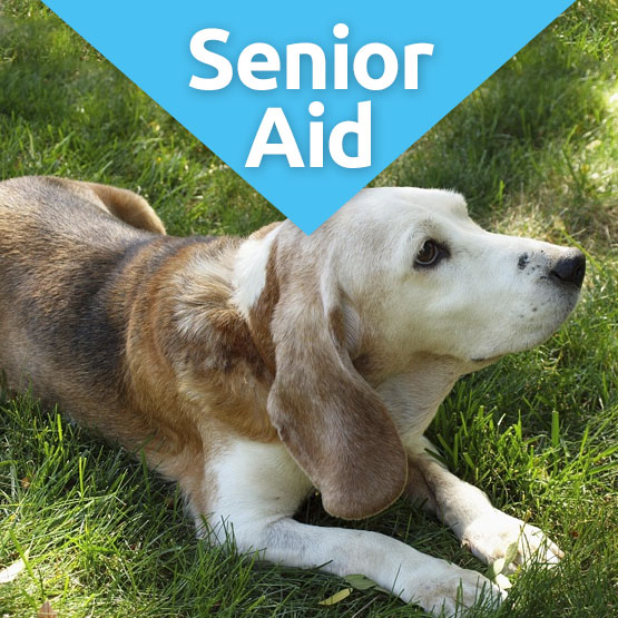 SeniorAid nutritional supplment for older dogs