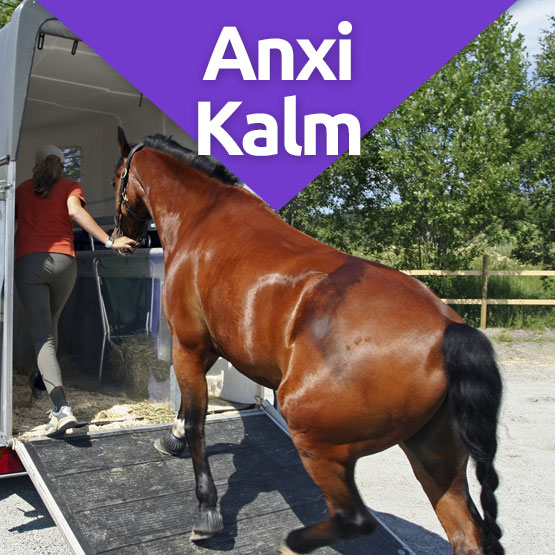 Anxikalm calming supplement for horses