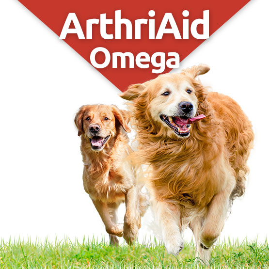 arthriaid omega glucosamin and chondroitin joint supplement for dogs