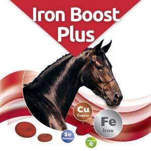IronBoost Plus