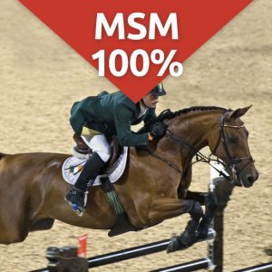MSM 100 joint care supplement for horses
