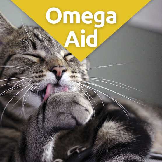OmegaAid Skin & Coat Supplement for Cats