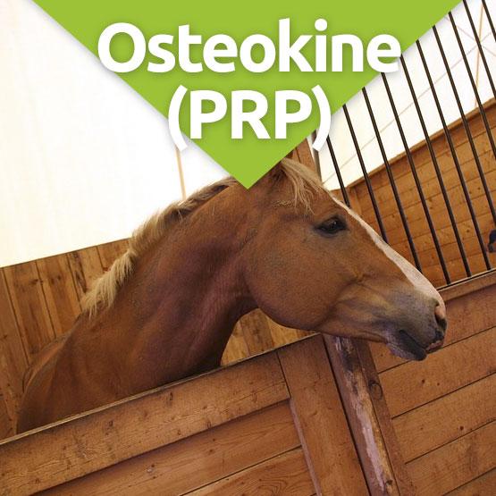 Osteokene PRP