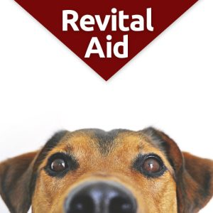 RevitalAid recovery supplement for dogs